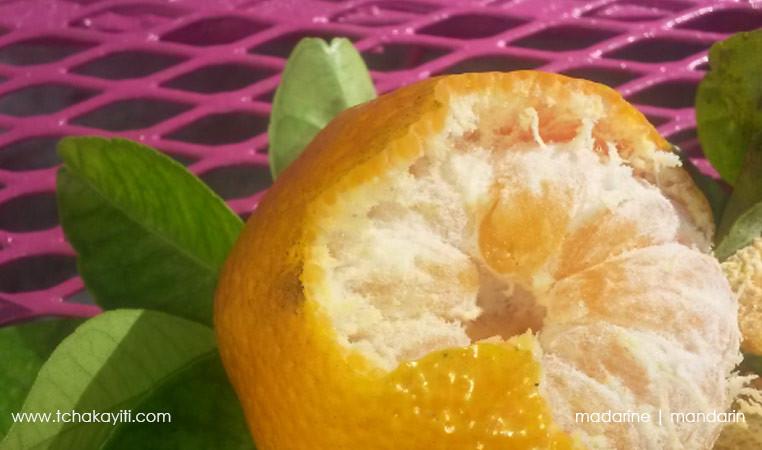 mandarine-haiti