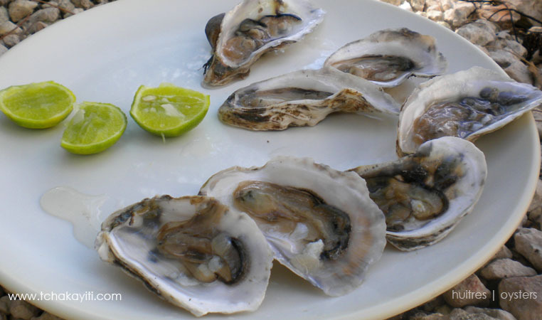oysters-haiti-huitres
