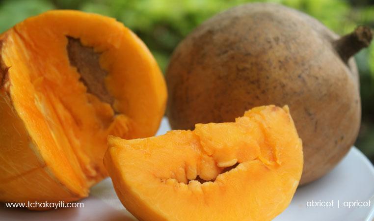 apricot-haiti-abricot-caraibes-mamey
